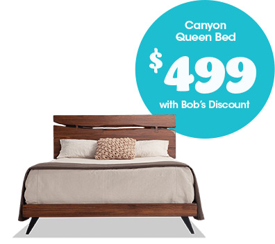 Canyon Queen Bed for $499